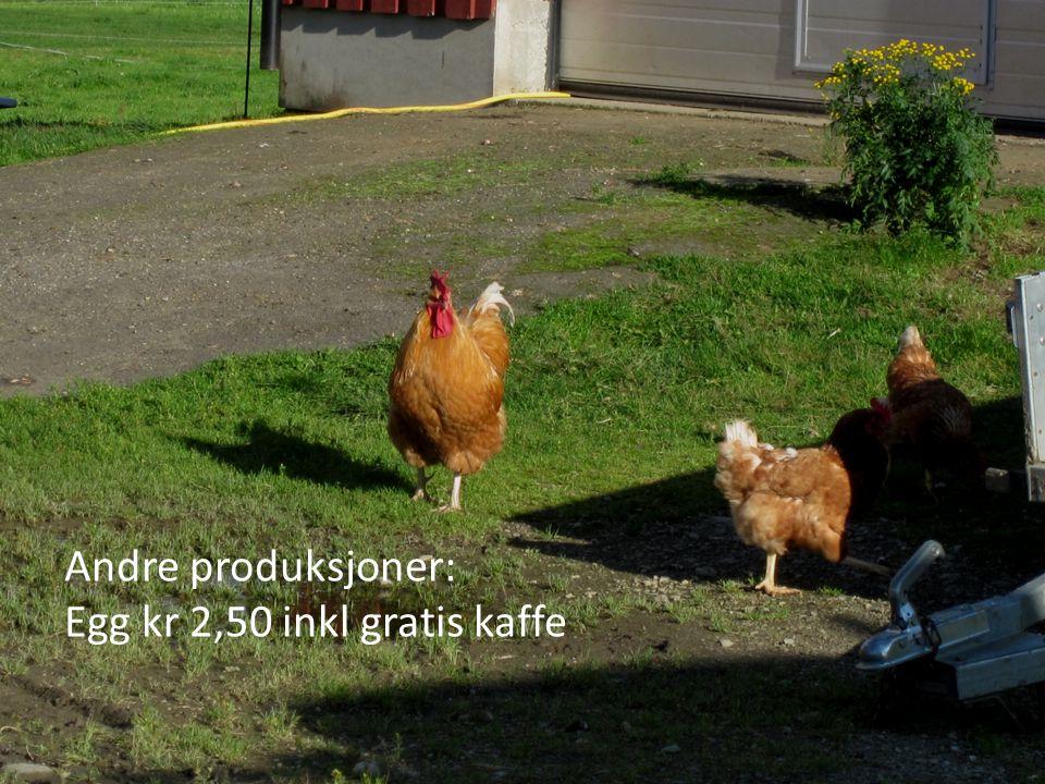 Andre produksjoner: Egg kr 2,50 inkl gratis kaffe