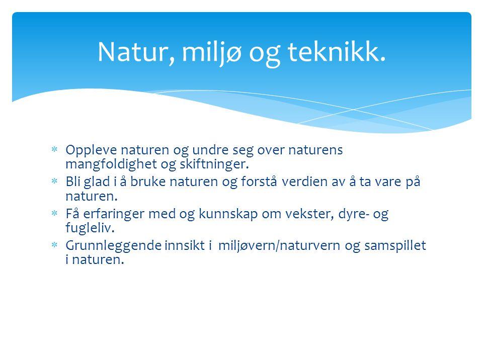 Natur, miljø og teknikk. Oppleve naturen og undre seg over naturens mangfoldighet og skiftninger.