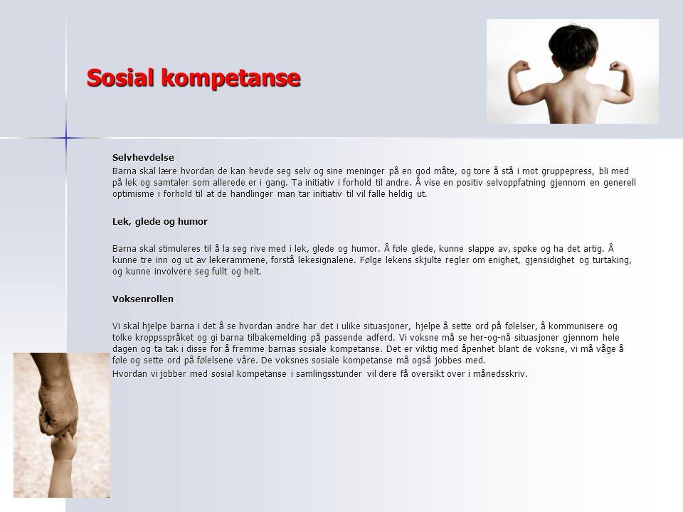 Sosial kompetanse Selvhevdelse