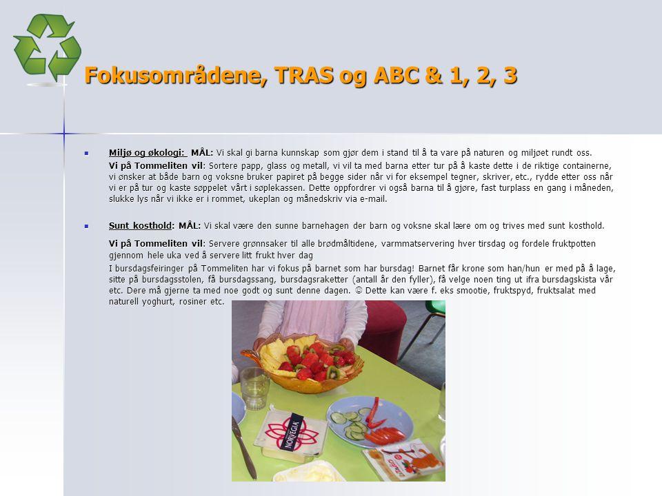 Fokusområdene, TRAS og ABC & 1, 2, 3