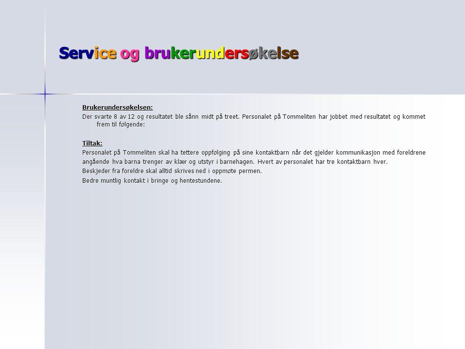 Service og brukerundersøkelse