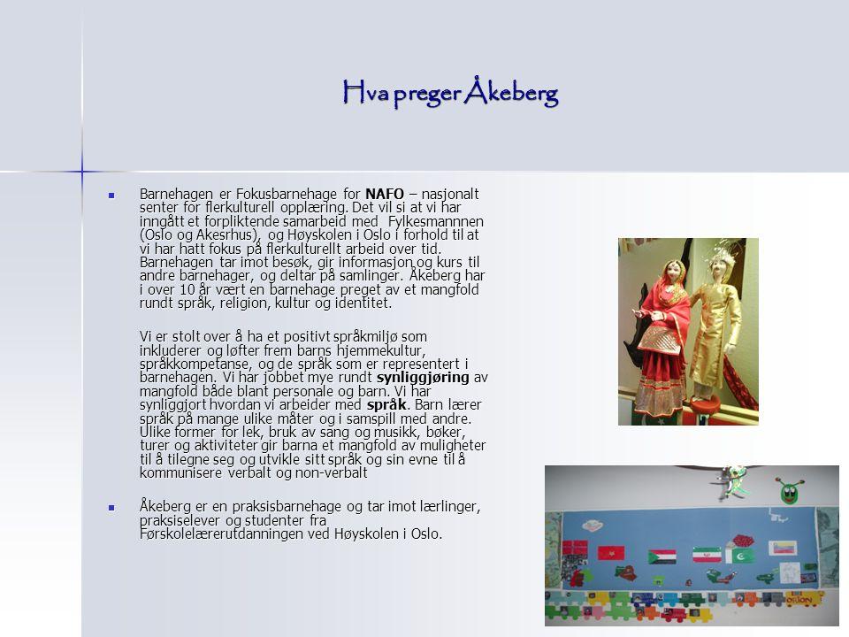 Hva preger Åkeberg