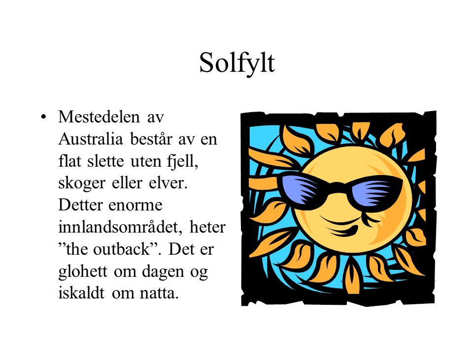 Solfylt