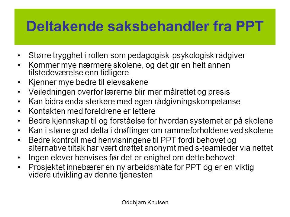 Deltakende saksbehandler fra PPT