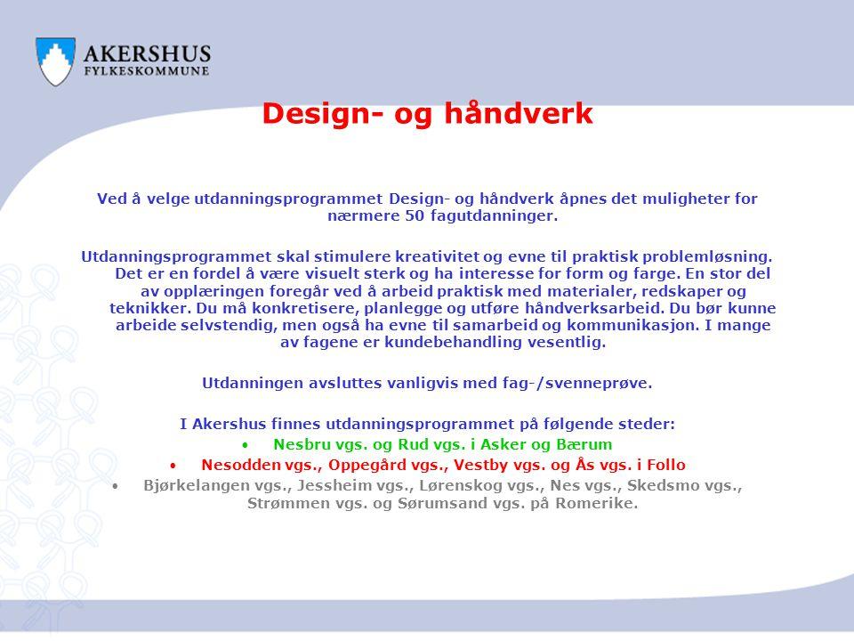 Design- og håndverk Ved å velge utdanningsprogrammet Design- og håndverk åpnes det muligheter for nærmere 50 fagutdanninger.