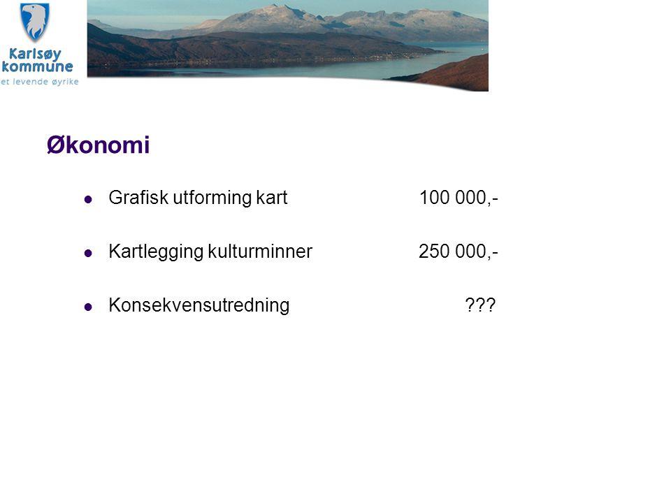 Økonomi Grafisk utforming kart 100 000,-