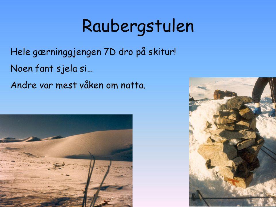 Raubergstulen Hele gærninggjengen 7D dro på skitur!