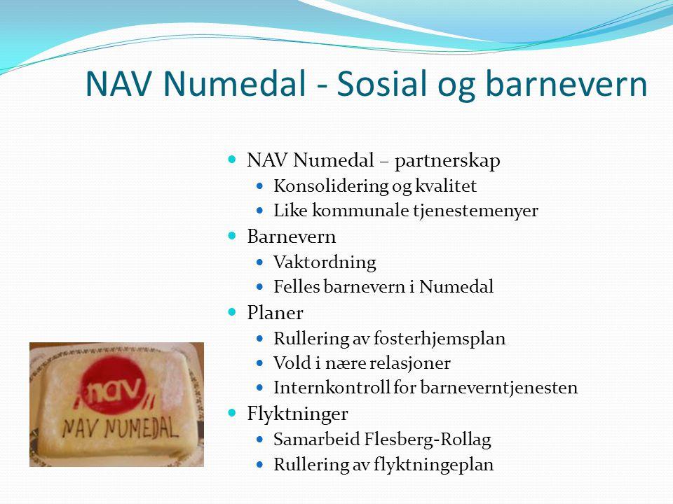 NAV Numedal - Sosial og barnevern