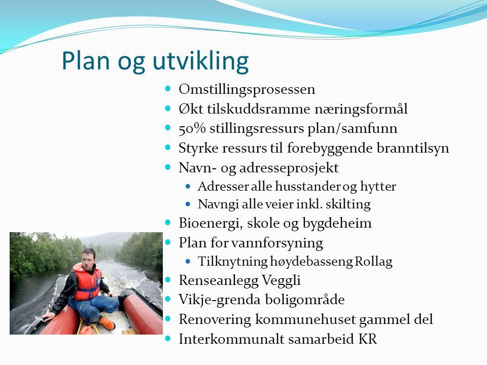 Plan og utvikling Omstillingsprosessen