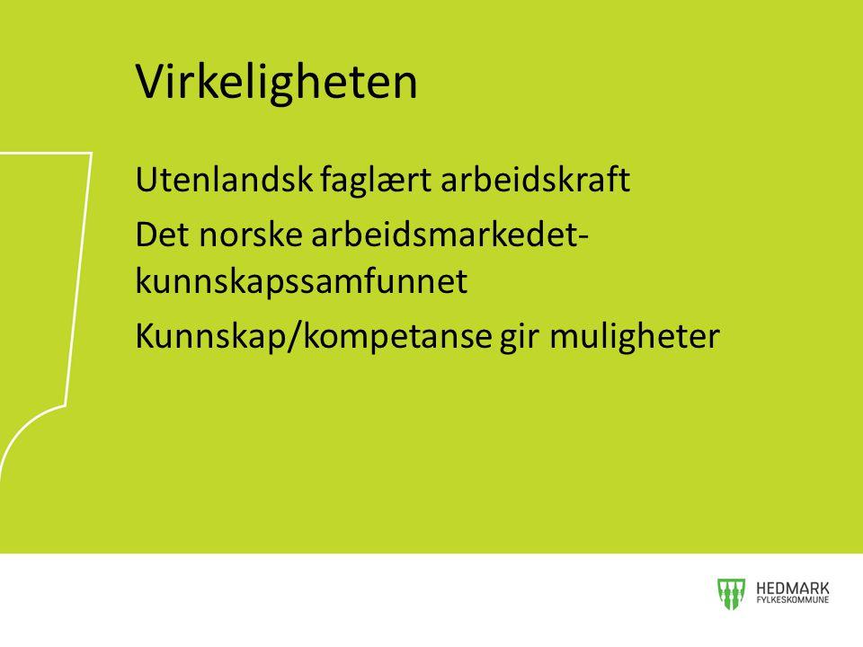 Virkeligheten Utenlandsk faglært arbeidskraft Det norske arbeidsmarkedet-kunnskapssamfunnet Kunnskap/kompetanse gir muligheter