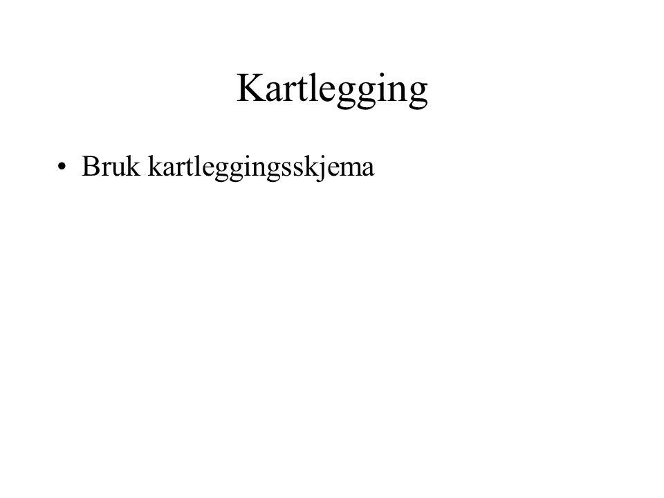 Kartlegging Bruk kartleggingsskjema