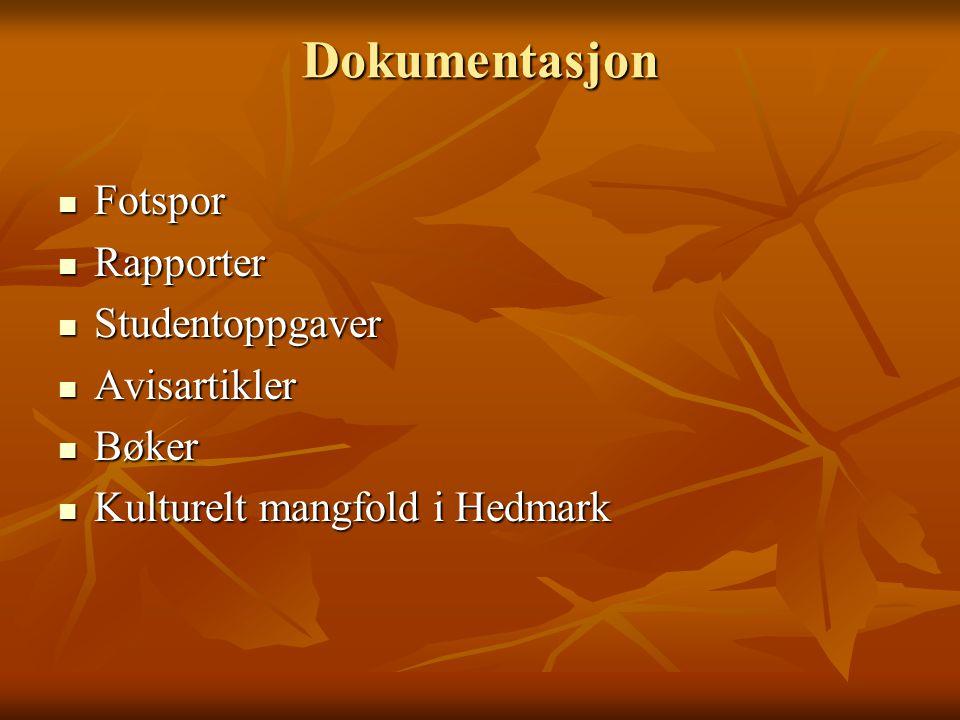 Dokumentasjon Fotspor Rapporter Studentoppgaver Avisartikler Bøker