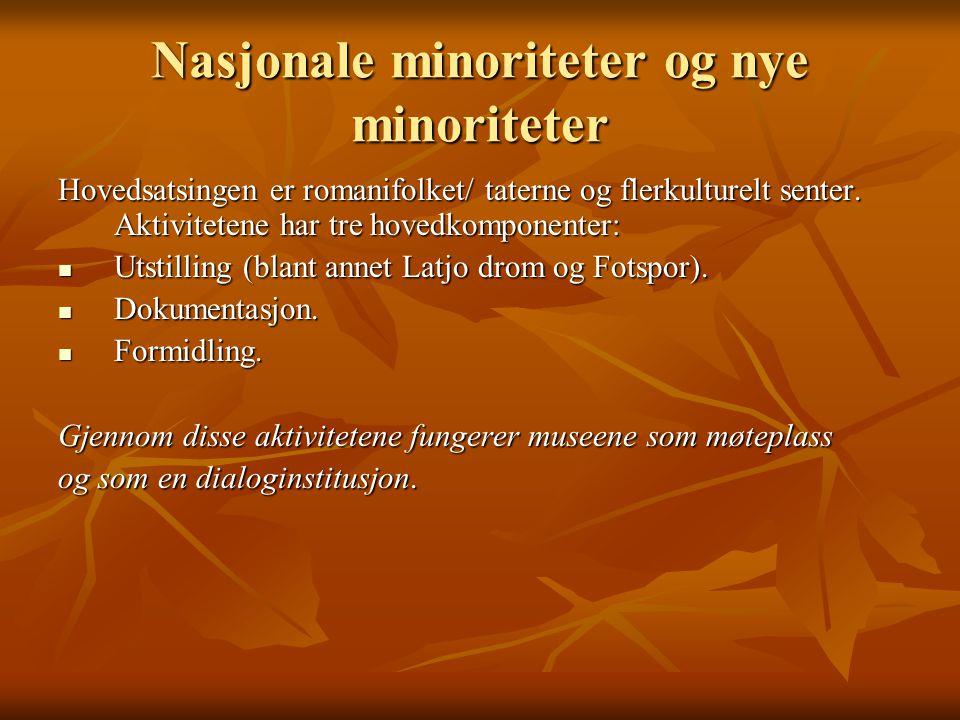 Nasjonale minoriteter og nye minoriteter