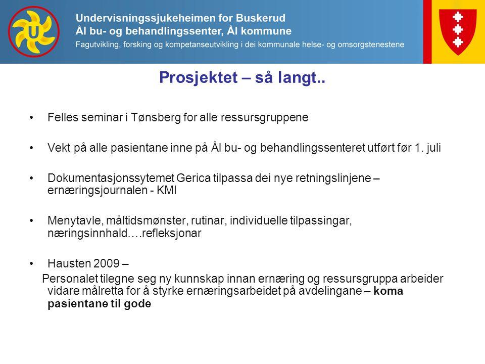 Prosjektet – så langt.. Felles seminar i Tønsberg for alle ressursgruppene.