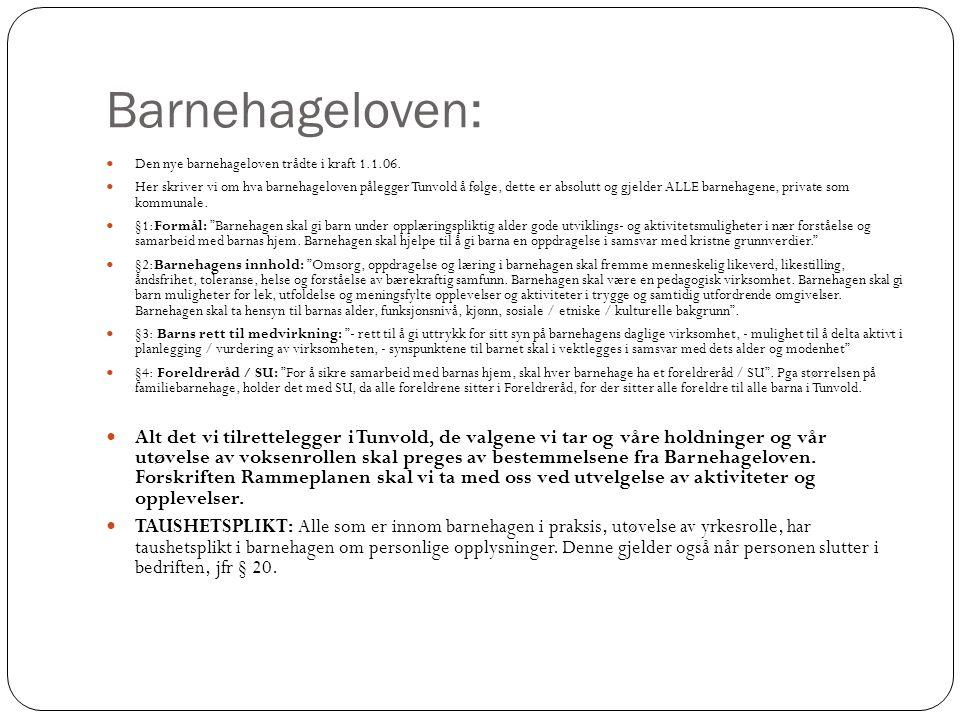 Barnehageloven: Den nye barnehageloven trådte i kraft 1.1.06.