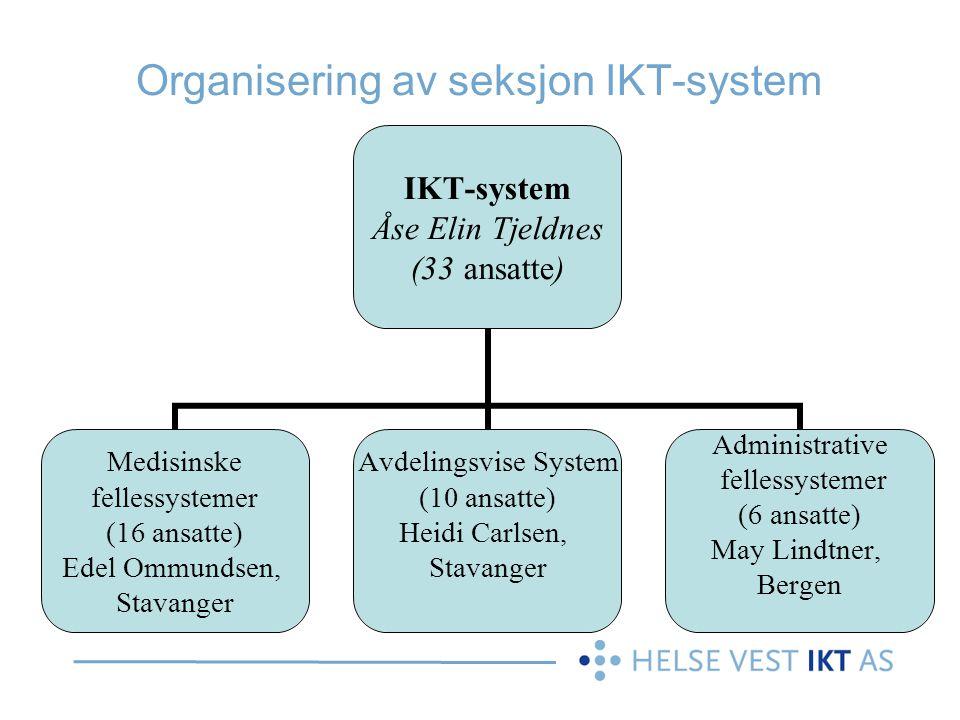 Organisering av seksjon IKT-system
