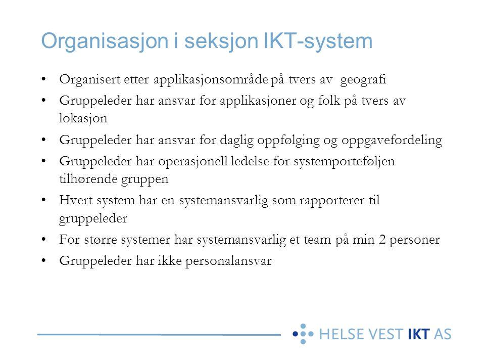 Organisasjon i seksjon IKT-system