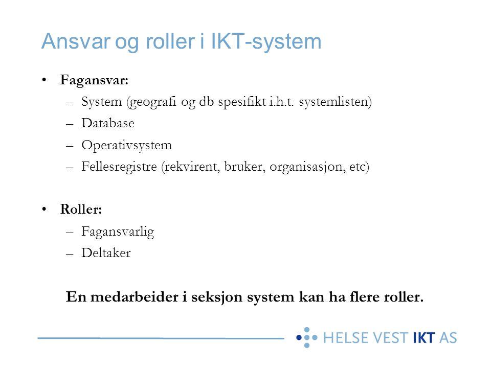 Ansvar og roller i IKT-system