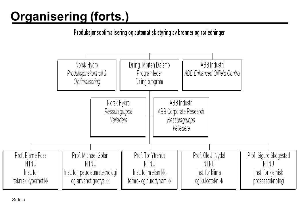 Organisering (forts.)
