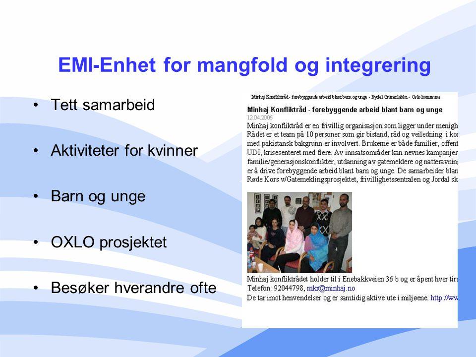 EMI-Enhet for mangfold og integrering
