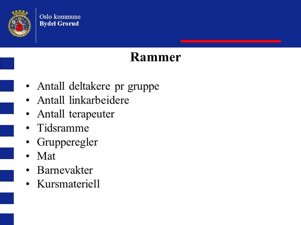 Rammer Antall deltakere pr gruppe Antall linkarbeidere