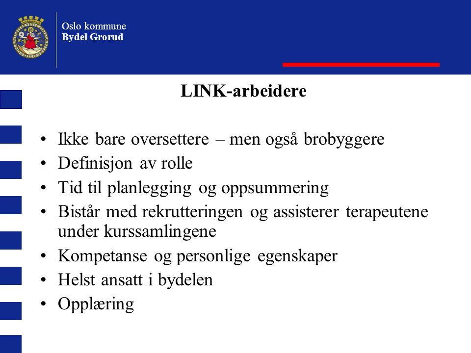 LINK-arbeidere Ikke bare oversettere – men også brobyggere. Definisjon av rolle. Tid til planlegging og oppsummering.