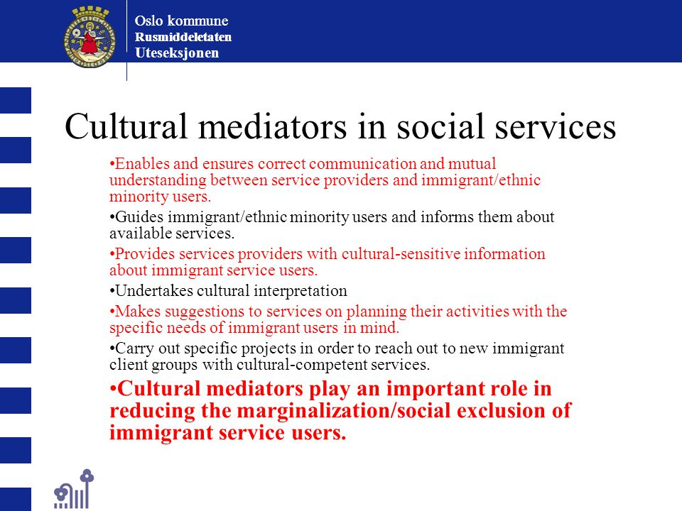 Cultural mediators in social services