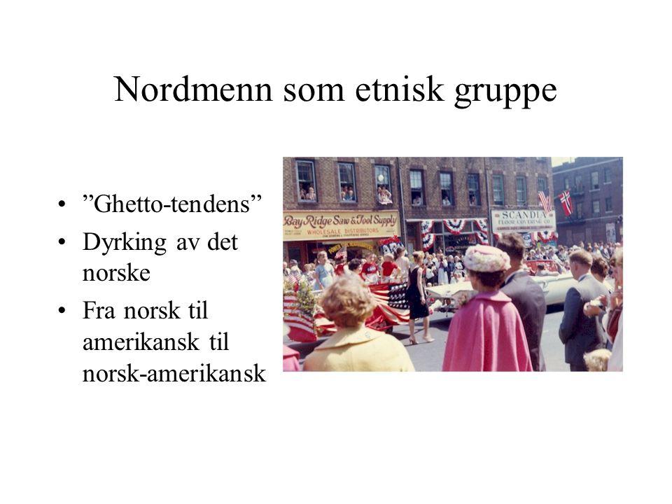 Nordmenn som etnisk gruppe
