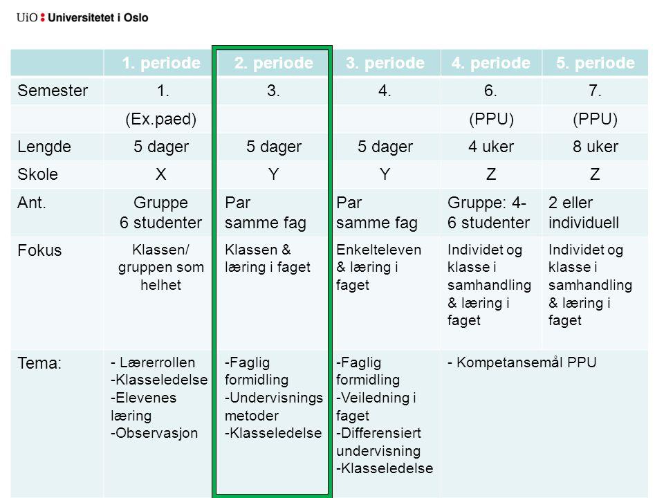 Klassen/ gruppen som helhet