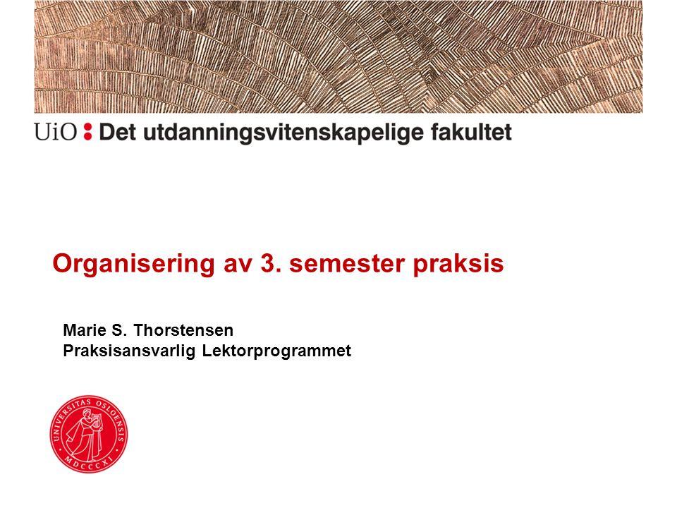 Organisering av 3. semester praksis