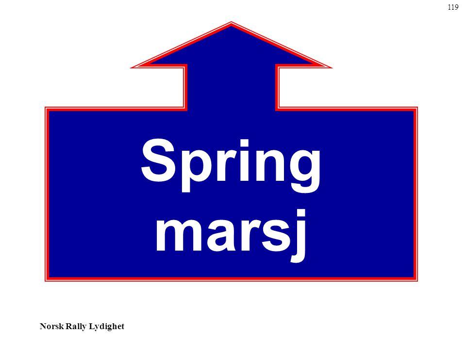 119 Spring marsj