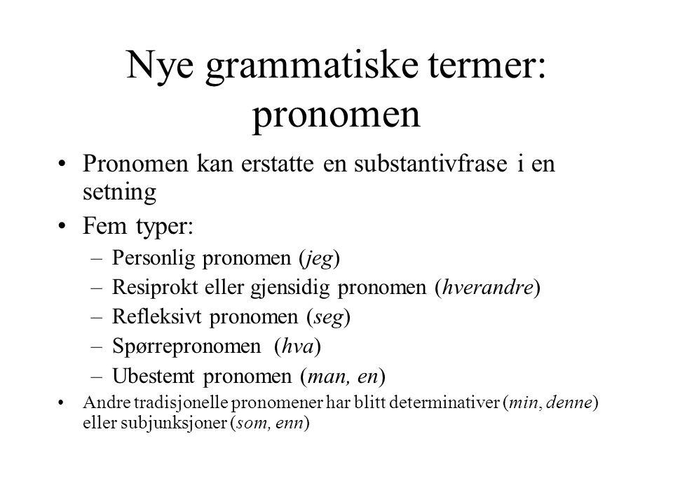 Nye grammatiske termer: pronomen