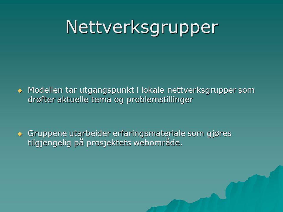 Nettverksgrupper Modellen tar utgangspunkt i lokale nettverksgrupper som drøfter aktuelle tema og problemstillinger.