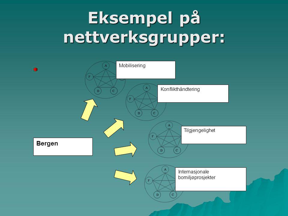 Eksempel på nettverksgrupper: