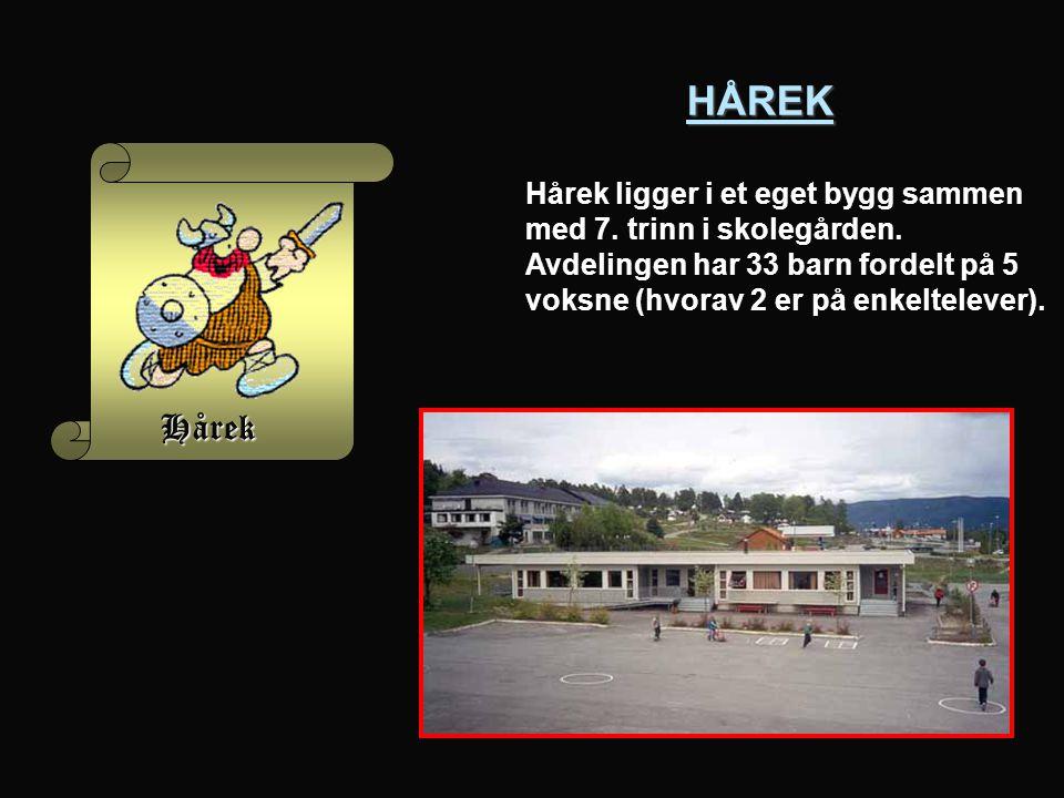 HÅREK Hårek Hårek ligger i et eget bygg sammen