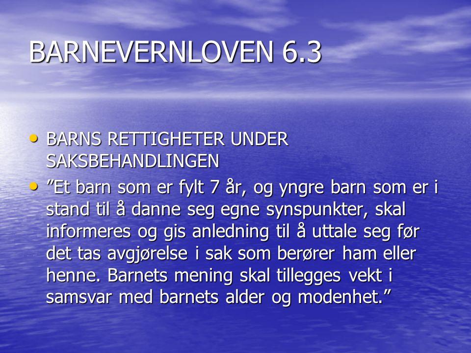 BARNEVERNLOVEN 6.3 BARNS RETTIGHETER UNDER SAKSBEHANDLINGEN