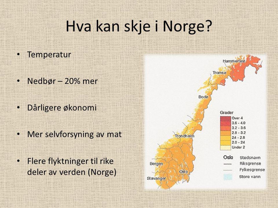 Hva kan skje i Norge Temperatur Nedbør – 20% mer Dårligere økonomi
