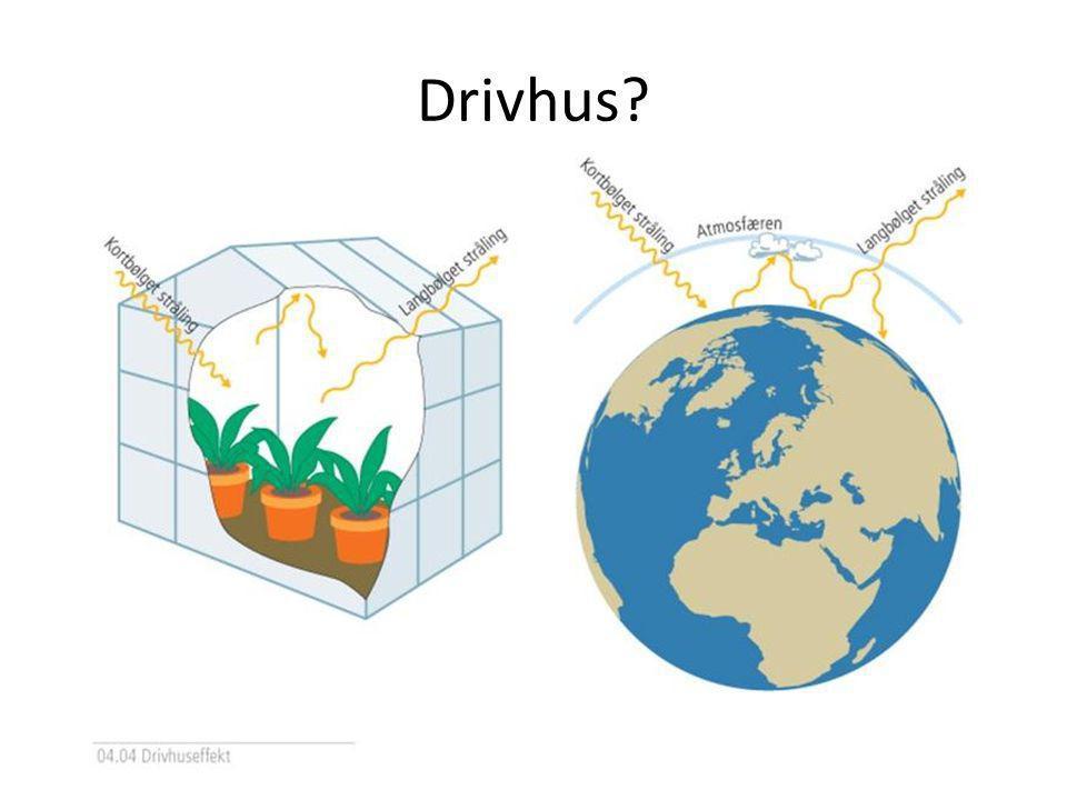 Drivhus Drivhuseffekten