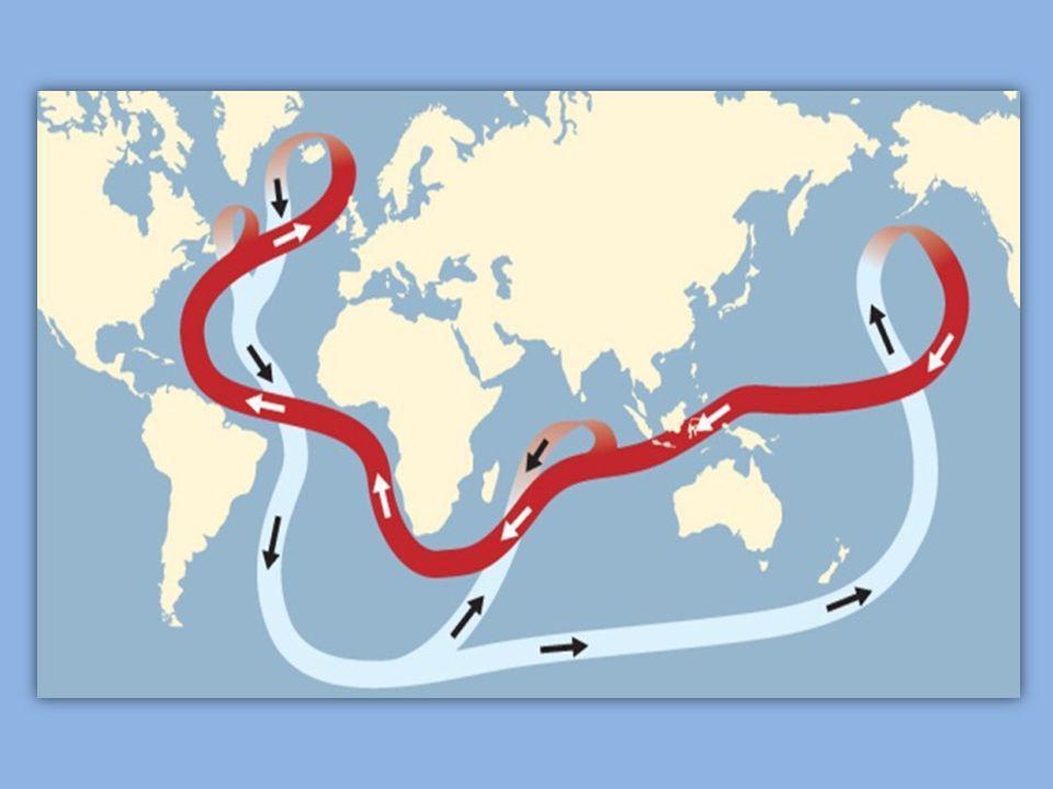 Havstrøm som sørger for varmt vann opp til kaldere strøk og omvendt