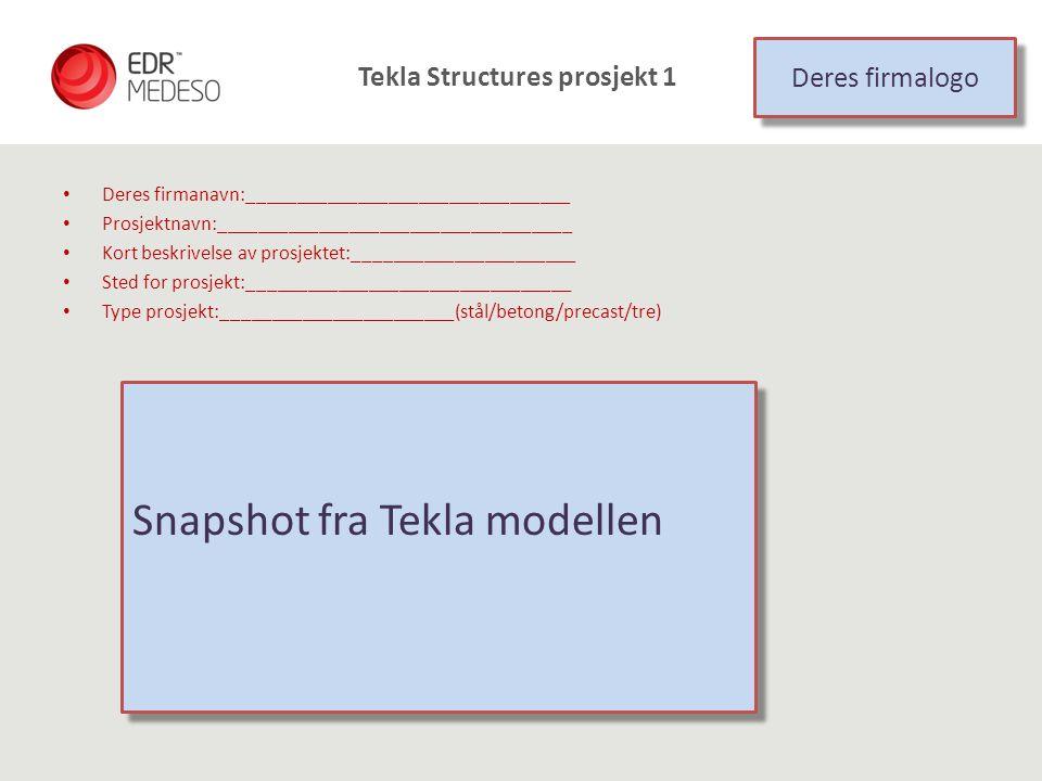 Tekla Structures prosjekt 1