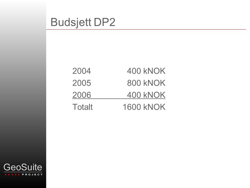 Budsjett DP2 2004 400 kNOK 2005 800 kNOK 2006 400 kNOK