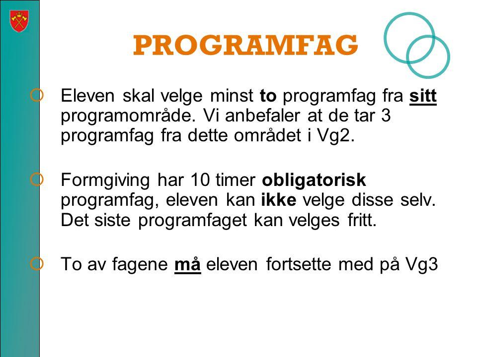 PROGRAMFAG Eleven skal velge minst to programfag fra sitt programområde. Vi anbefaler at de tar 3 programfag fra dette området i Vg2.