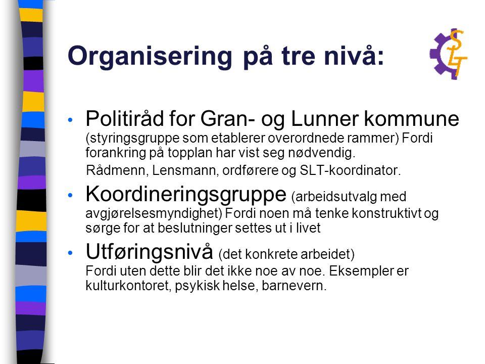 Organisering på tre nivå: