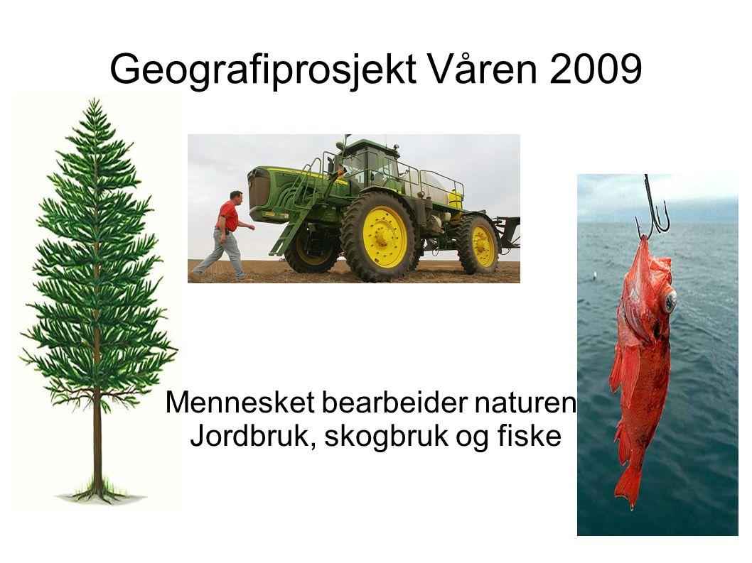 Geografiprosjekt Våren 2009