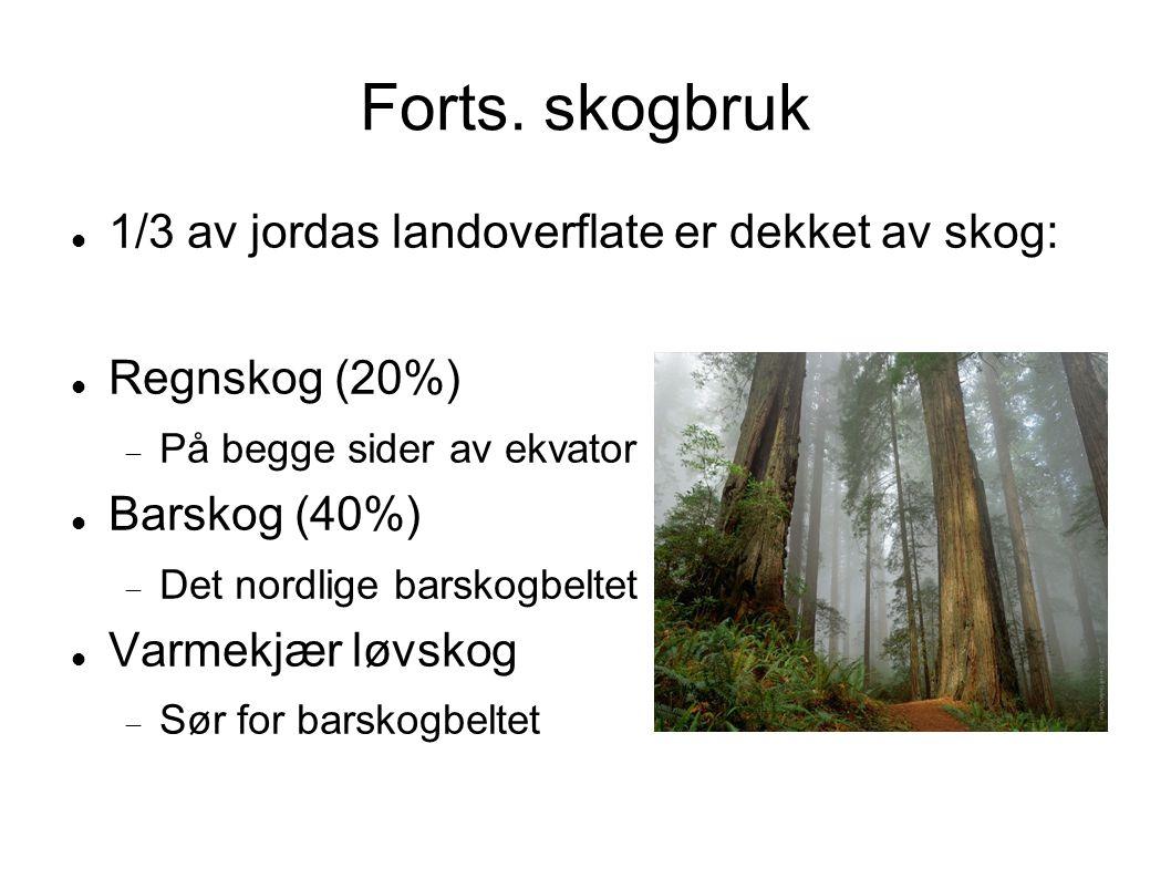 Forts. skogbruk 1/3 av jordas landoverflate er dekket av skog:
