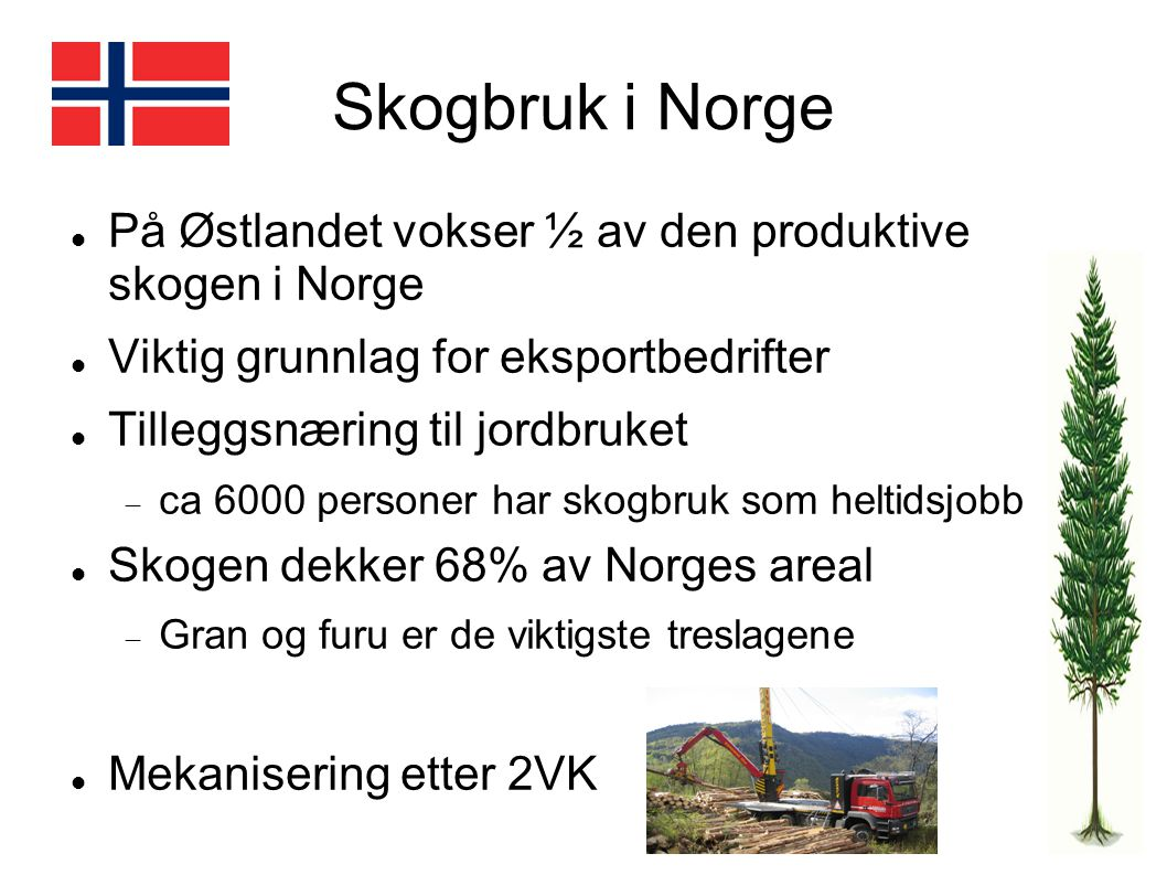 Skogbruk i Norge På Østlandet vokser ½ av den produktive skogen i Norge. Viktig grunnlag for eksportbedrifter.