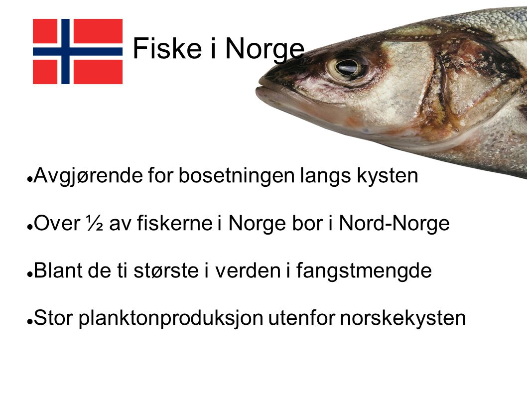 Fiske i Norge Avgjørende for bosetningen langs kysten