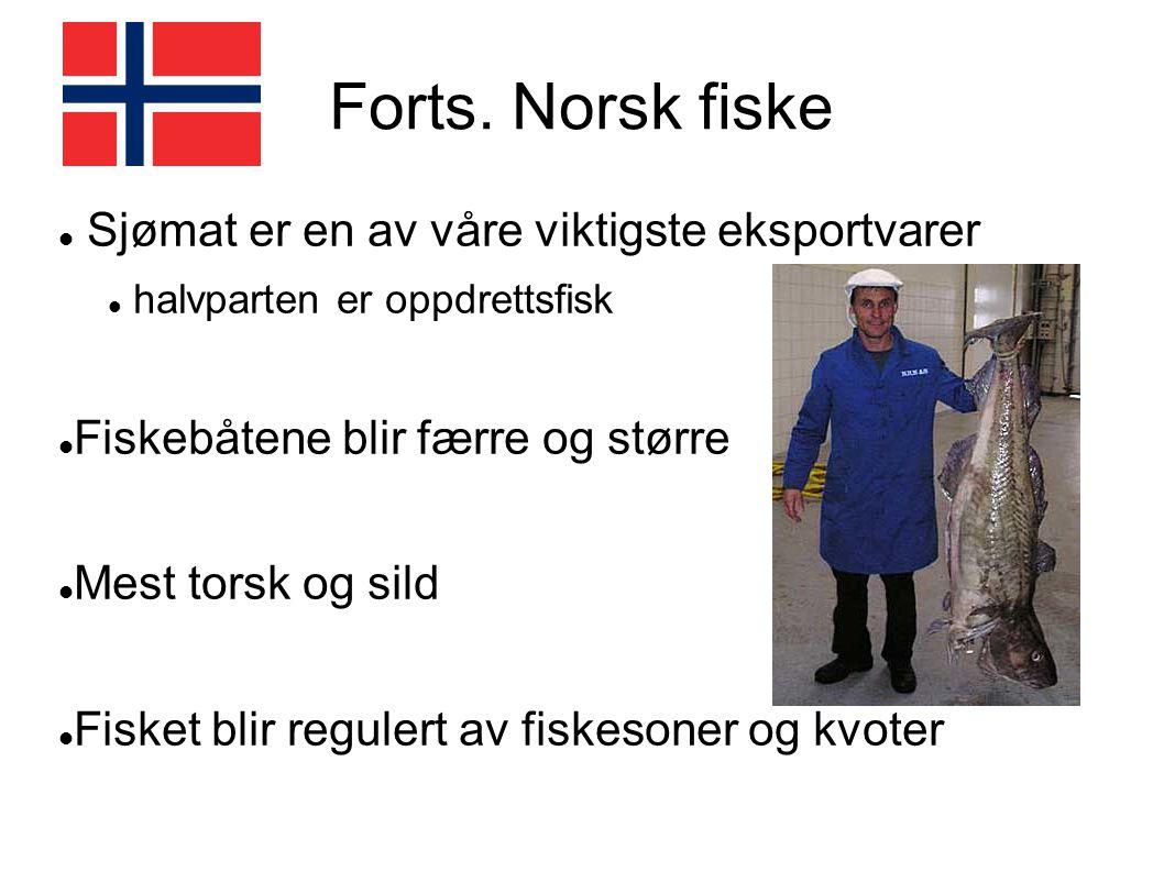 Forts. Norsk fiske Sjømat er en av våre viktigste eksportvarer