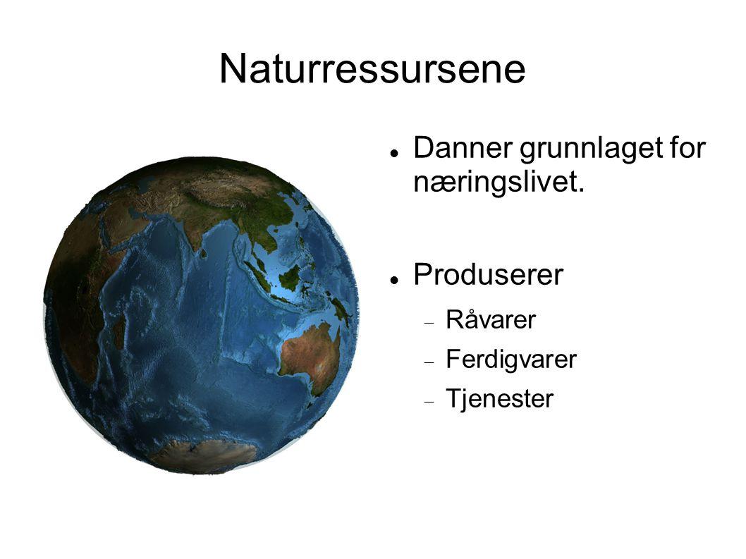 Naturressursene Danner grunnlaget for næringslivet. Produserer Råvarer