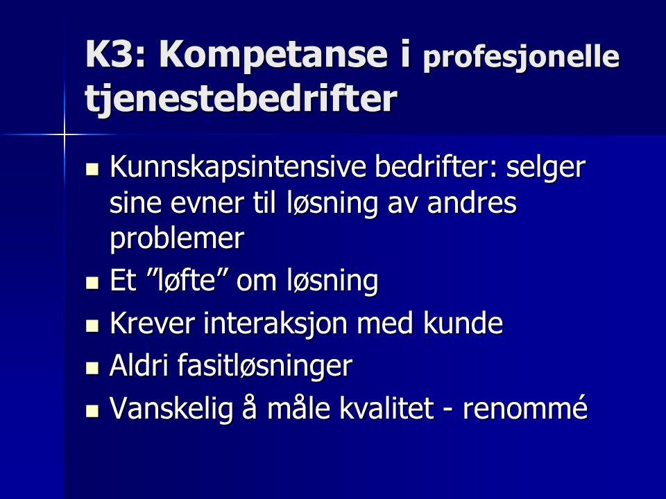 K3: Kompetanse i profesjonelle tjenestebedrifter